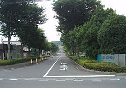 Saitama-Women's-Junior-College-2015080101.jpg