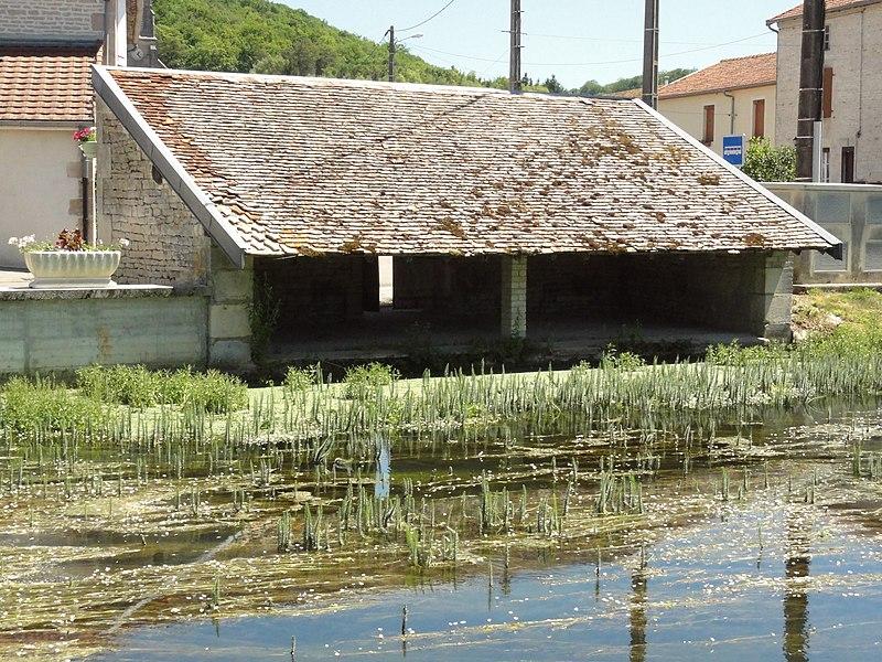 Saucourt, lavoir du bief du Rognon