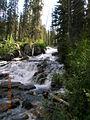 Sawtooth Wilderness stream 2.JPG