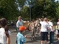 Schaerbeek - Fête de la cerise 2009-06-28.JPG