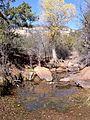 Secret Canyon Trail, Sedona, Arizona - panoramio (5).jpg