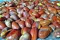 Seeds of Jackfruit 001.jpg