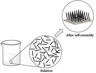 Self-assembly of nanoparticles - An example of self-assembly of nanoparticles in a solution. In this diagram, it can be seen that a disordered system formed an organized structure which can be due to specific interactions among the particles.