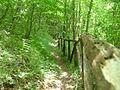 Sentiero 427 - panoramio (2).jpg