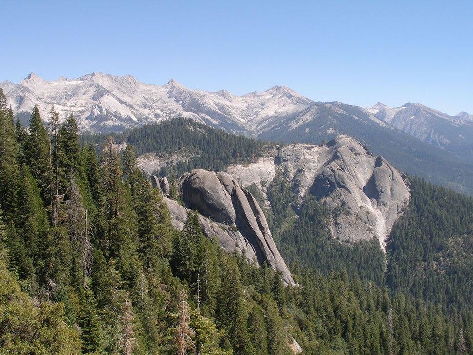 SequoiaNP California4