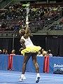 Serena serving.jpg