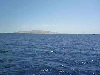 Shadwan Island - Shadwan from a boat
