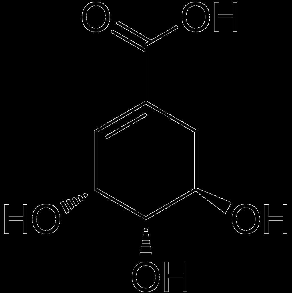 Dateishikimic Acid Skeletalg Wikipedia