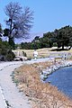 Shoreline Park Mountain View California IMG 2708.jpg