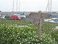Signpost and wild garlic at Porlock Beach - geograph.org.uk - 1238815.jpg