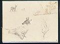 Sketchbook of Landscape and Animal Subjects MET APS1711.jpg