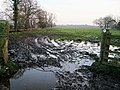 Sloppy footpath from Scaleby to Hadrian's Wall - geograph.org.uk - 690343.jpg