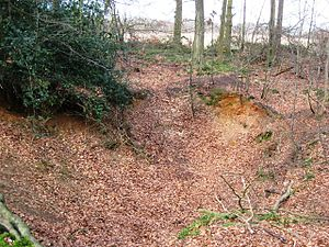 Brickearth - Brickearth deposit exposed in a small quarry in the Chiltern Hills at Cholesbury, Buckinghamshire, England