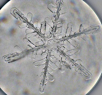 Precipitation - Snowflake viewed in an optical microscope