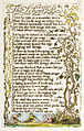 Songs of Innocence and of Experience, copy A, 1795 (British Museum) 21-53 The School Boy.jpg