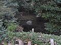 Source of Todoroki Springs.JPG