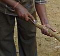 Sri Lanka-Décorticage de la cannelle (2).jpg