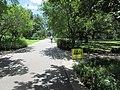 St Charles Avenue at Audubon Park New Orleans 11 June 2020 07.jpg