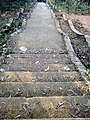 Stairs of modhutila.jpg