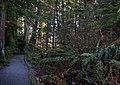Stanley park (2289558878).jpg
