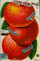 Stark fruit book (1901) (20562490465).jpg