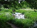Stepping stones - geograph.org.uk - 260842.jpg