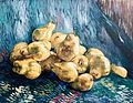 Still Life with Quince Pears - My Dream.jpg