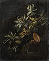 Stilleven met passiebloemen. Rijksmuseum SK-A-788.jpeg