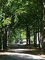 Stjernsvärds allé Valhall Park.jpg