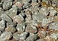 Stones in Gotland cairn.jpg