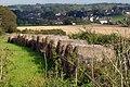 Straw bales, Higher Alston, near Churston - geograph.org.uk - 67282.jpg