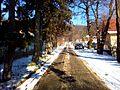 Street - panoramio - Zed Juron.jpg