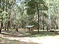 Stringybark creek1.JPG