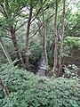 """Struga """"Flis"""" przepływająca pod nasypem zdemontowanej kolejki normalnotorowej - panoramio.jpg"""