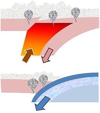 Orogeny - Two processes that can contribute to the formation of orogens. Top: delamination of orogenic roots into the asthenosphere; Bottom: Subduction of lithospheric plate to mantle depths. The two processes lead to differently located metamorphic rocks (bubbles in diagram), providing evidence as to which process actually occurred at convergent plate margins.