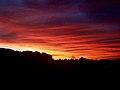 Sunset at Bgca Paulista.jpg