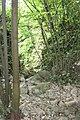 Suva dolina 03.jpg
