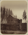 Syr Darya Oblast. View of Russian Cottage on the Outskirts of the City from the Orenburg-Tashkent Road WDL10992.png