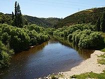 Taieri River (Outram).jpg