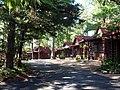 Tall Pines Motor Inn.jpg