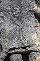 Tapureli Kriegerreliefs 07.jpg
