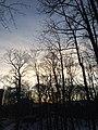 Tartu - -i---i- (31618875804).jpg
