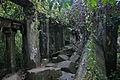 Temple & jungle. (3746632042).jpg
