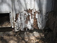 Termite damage on external structure
