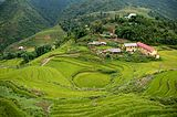 Terraced fields Sa Pa 4.jpg