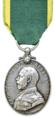 Territorial Efficiency Medal, obverse.png