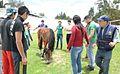 Test de Asistencia del caballo con Rogelio Hernández Huerta.jpg