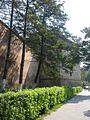 Tg.Mures Cetatea (6).JPG