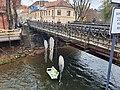 The Bridge of Užupis.jpg