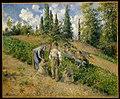 The Harvest, Pontoise (La Récolte, Pontoise) MET DT3127.jpg